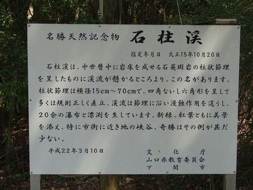 DSC00925_R.JPG