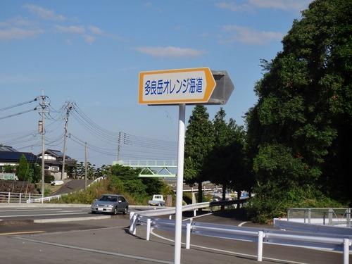 DSC03859_R3.JPG